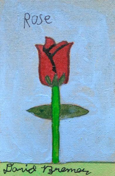 David Bremer Flowers Rose