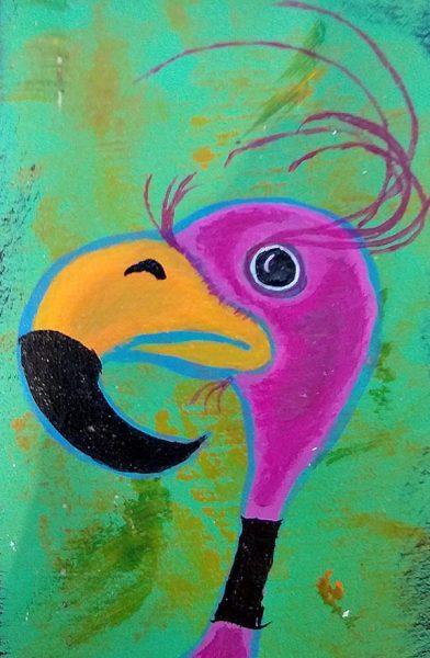 Brad Weber Birds etc